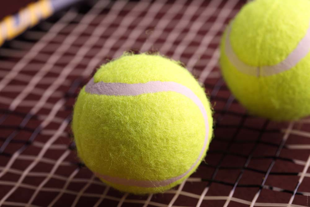 Wolverine girls tennis opens season with sweep at Avery