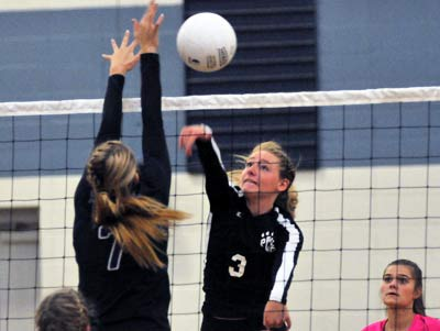 Polk County's Ansley Lynch recorded four kills for the Wolverines in the win.