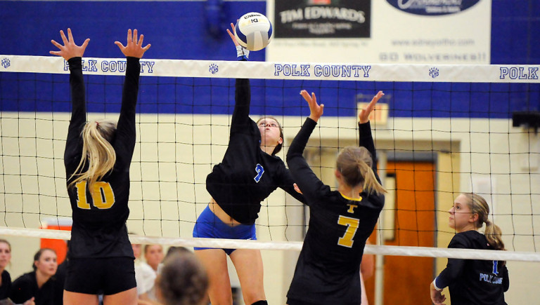 Wolverines top Tuscola in final tuneup for conference play